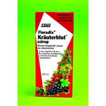 Floradix Krauterblut Szirup 250ml